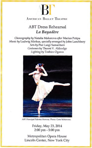LaBayadere-Dress