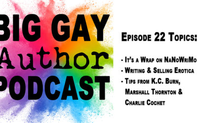 Wrapping Up NaNoWriMo 2019 – Big Gay Author Podcast episode 22
