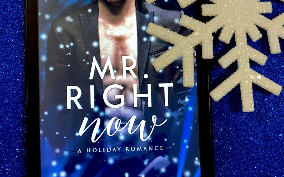 Quick Review – Mr Right Now by Annabeth Albert